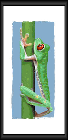 Red-eyed Tree Frog Pattern (L9-006)