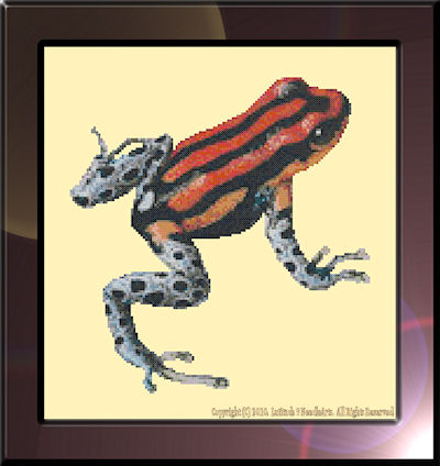 Spot-Bellied Poison Dart Frog Pattern (L9-013)